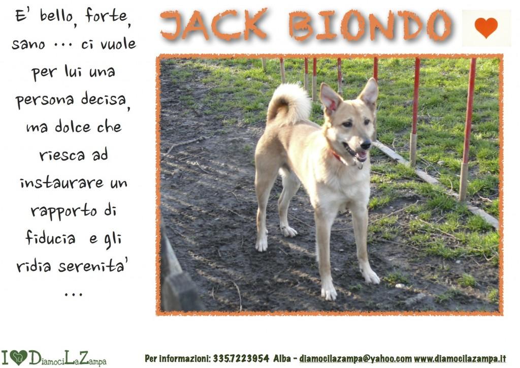 Jack Biondo (2)
