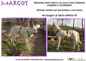 MARGOT (2)