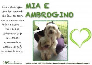 Mia e Ambrogino (2)