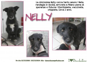 Nelly (2)