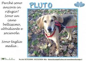 PLUTO (2)