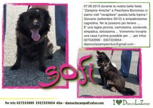 SOFI (2)