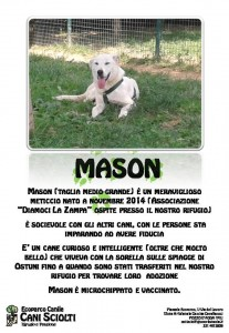 appello manson (2)