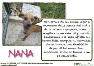 nana (2)