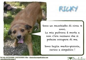 ricky (2)