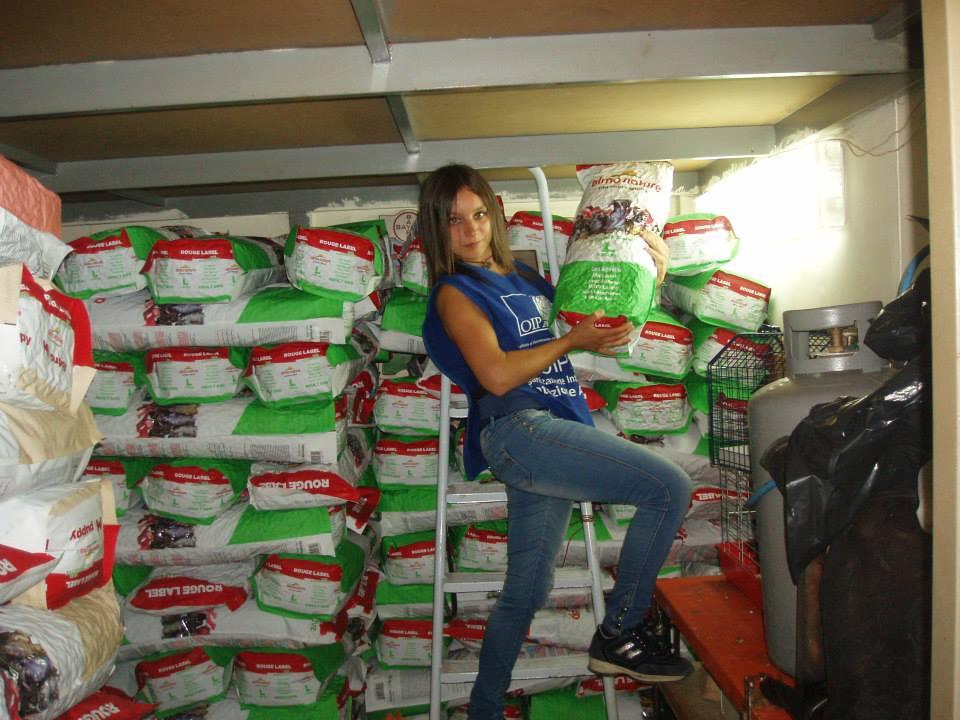 Oipa Foggia Linda Tortorelli 1075791_10200320330914147_1996029253_n