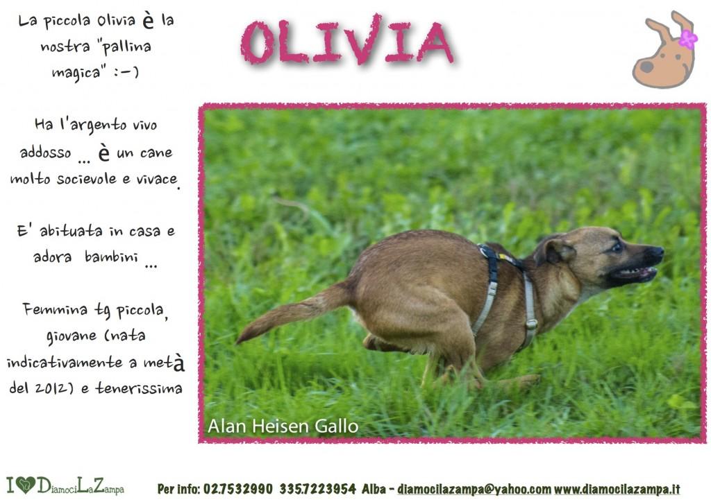 Olivia ok