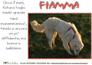 Fiamma (2)