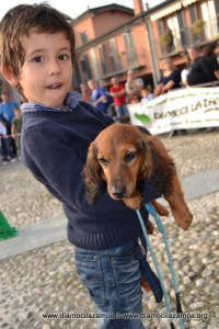 1-cani simpatia Pandino 192
