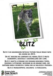 blitz (1)